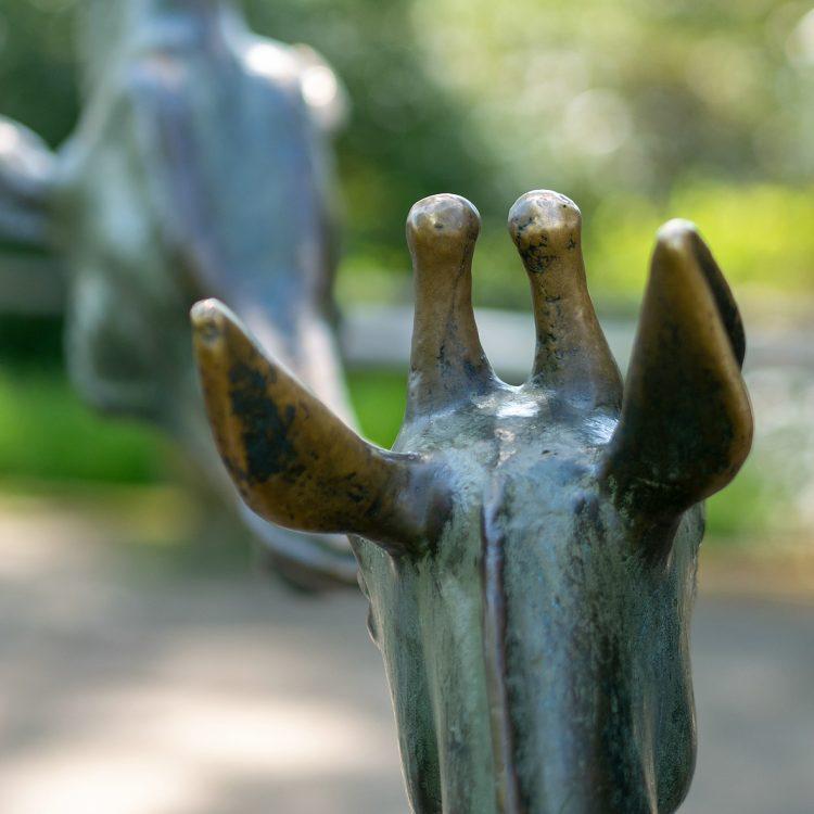 Zwei Giraffen von Hans Hennig
