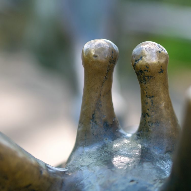 Zwei Giraffen von Hans Hennigig