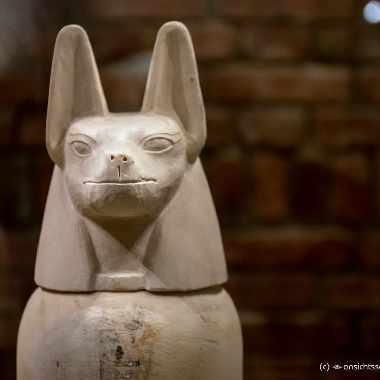 Neues Museum Kopf des Anubis