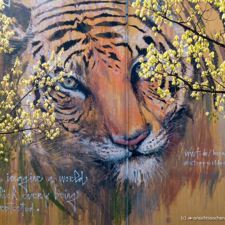 Tigerbild von Herakut